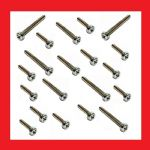 BZP Philips Screws (mixed bag of 20) - Suzuki PE250